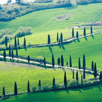 Motorcycle tours in Florence, Tuscany
