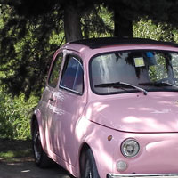 Vintage FIat 500 tour Florence: Isabella from our fleet 6